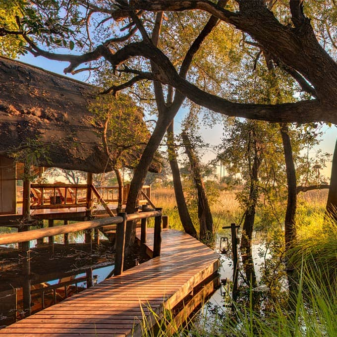 View Belmond Eagle Island Lodge in the Okavango Delta