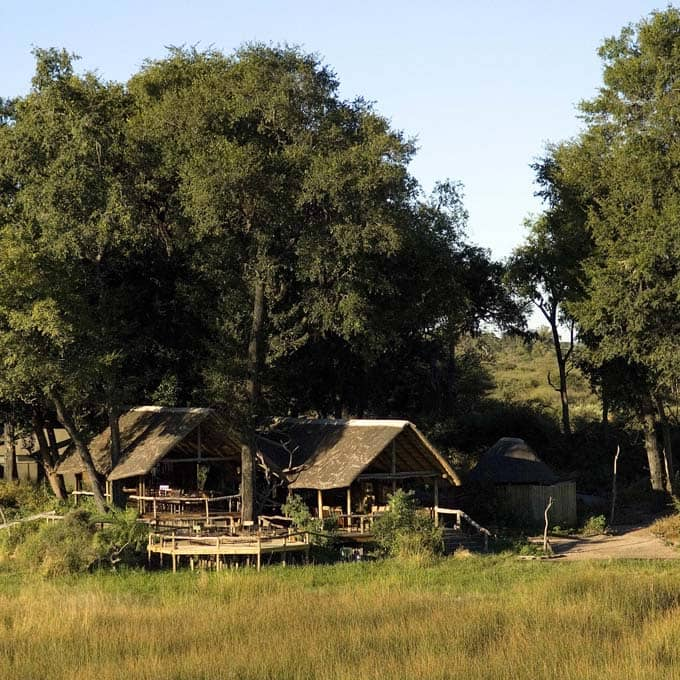 View Duba 