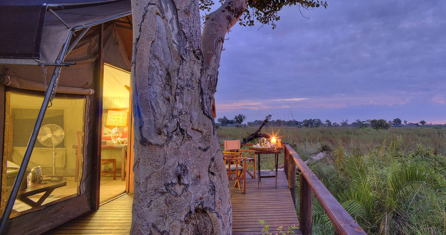View from Nxabega Okavago Tented Camp over the Surrounding Bus