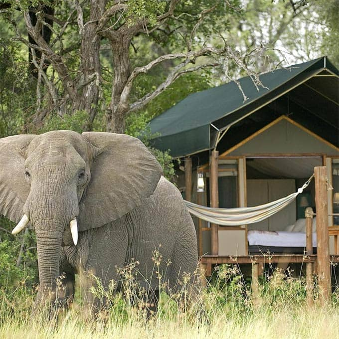 View Sanctuary Botswana lodges